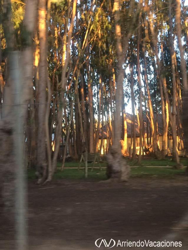 Casa en Bosque en condominioDepartamentoenAlgarrobo